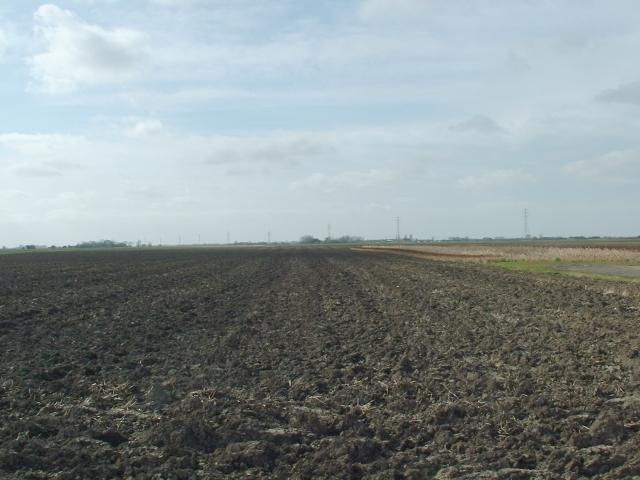 Fields near Fen Lane, Gorefield.