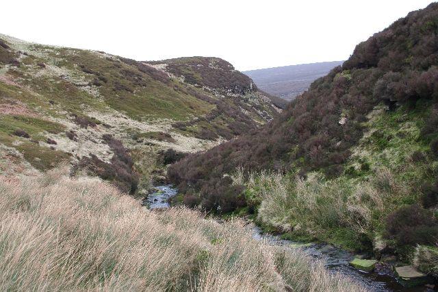 Wicken Hill from Loftshaw Brook