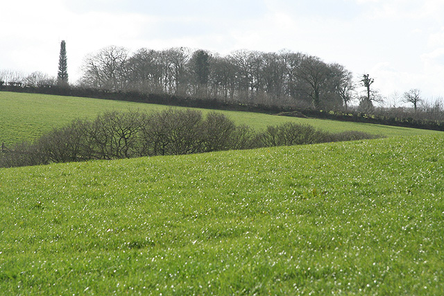 Thelbridge: north from Mill Barton