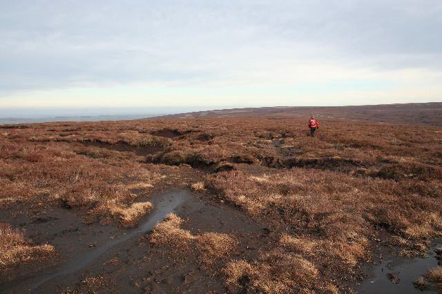 Fell-runner, Harden Moss