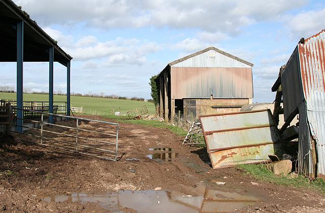 Thelbridge: barns