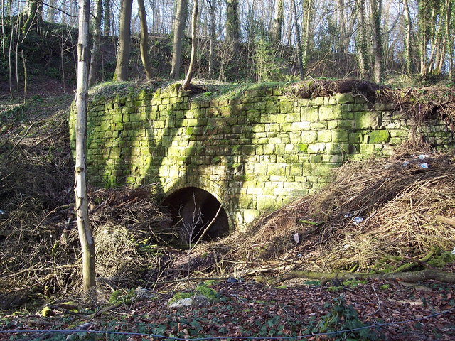 Disused quarry workings at Warminster Plantation, East Knoyle