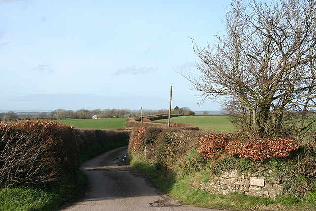 East Worlington: lane to Halse