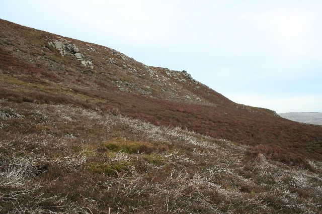 Horse Stone Naze from below