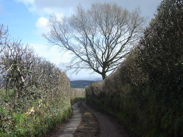 Caerlicken Lane.