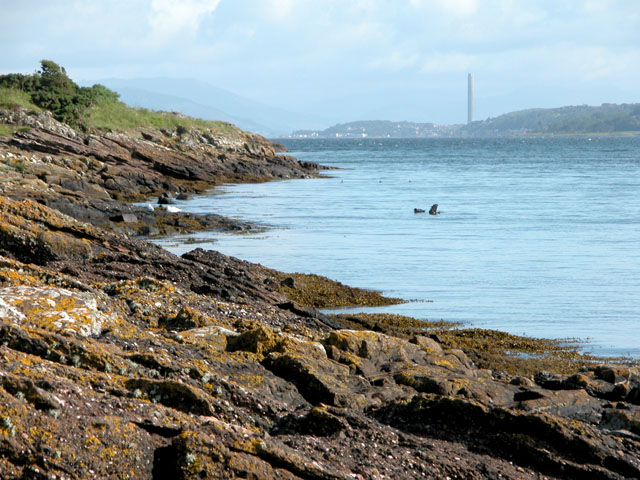 Looking North from Cumbrae Slip