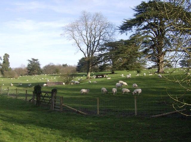 Highclere Park