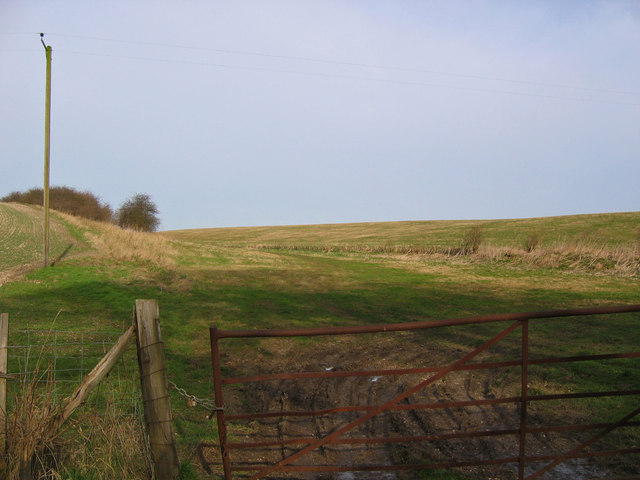 Towthorpe Field