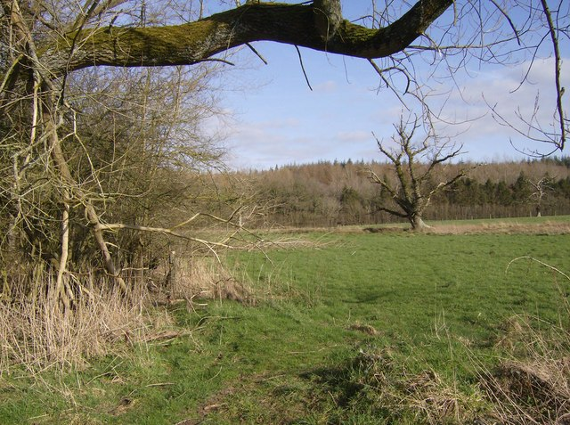 Footpath to Highclere estate