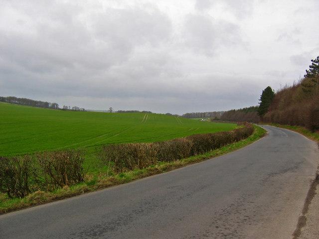 Road To Wintringham