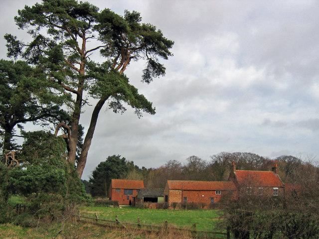 Scampston Mill Farm