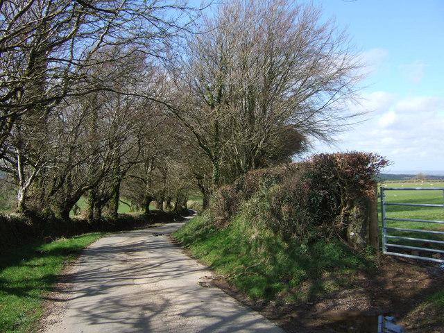 Lane to Bowerland