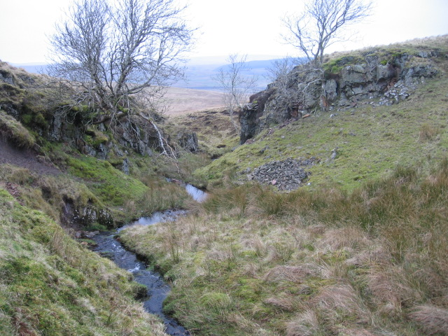 Burn below Brack Hill