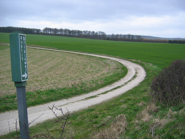 Bridleway To Green Plantation