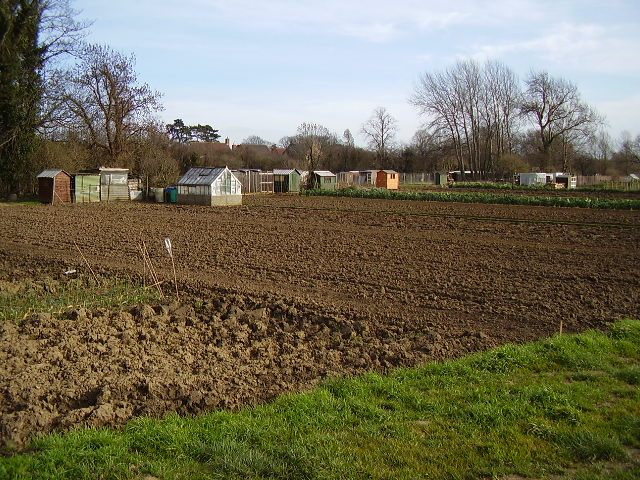 Drove Allotments provided by Sleaford Town Council