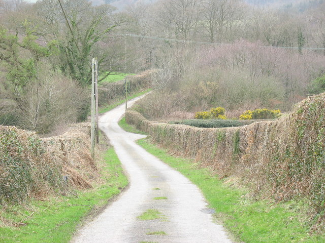 National Cycle Route 8 near Fodol Isa' Farm