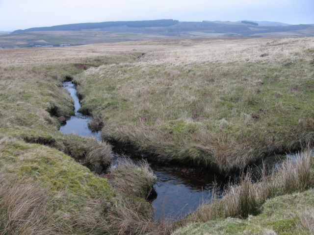 Burn below Hawlk Hill