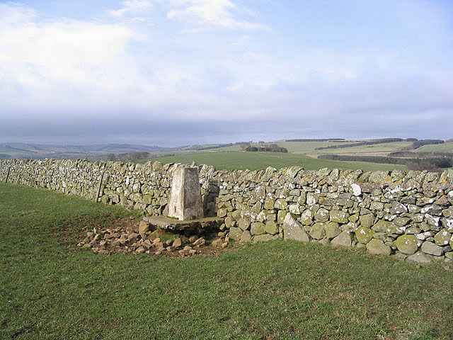 The trig point to the east of Bishop's Well Plantation
