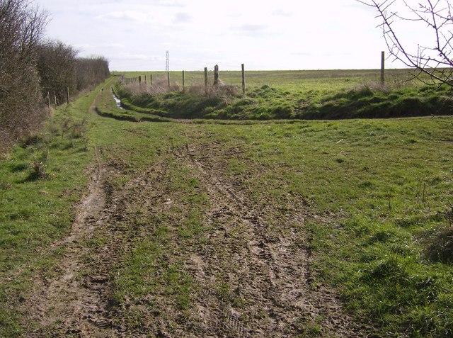 Downland farming