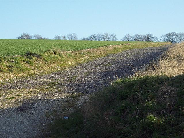 Farm track near Fonthill Bishop