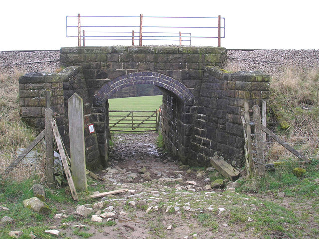 Cattle arch