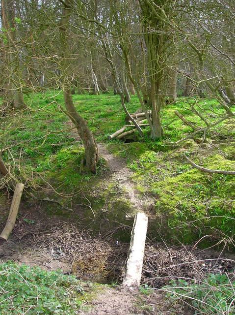 Entrance to Turnpike Wood