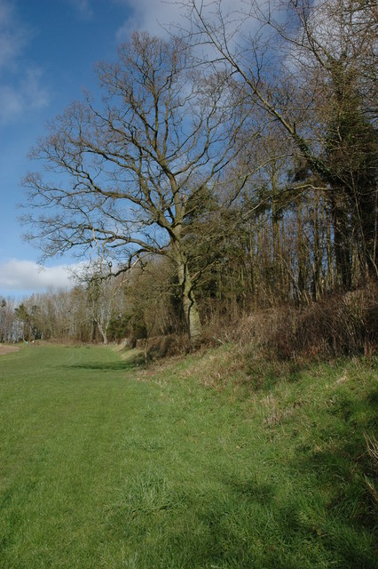 Earthworks of the hill fort above Brierley
