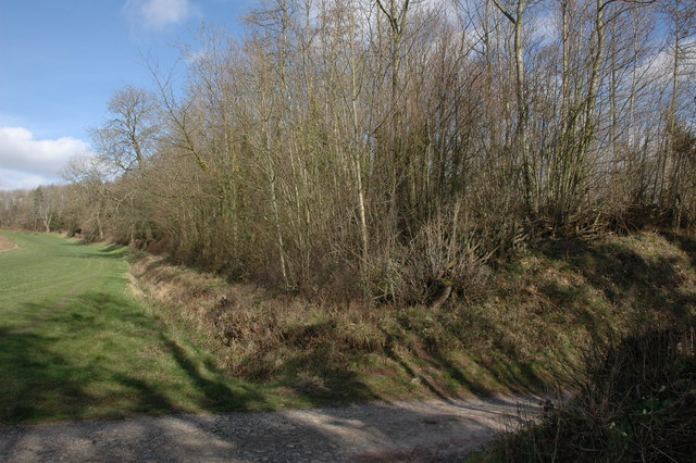 Earthworks of hill fort, Brierley