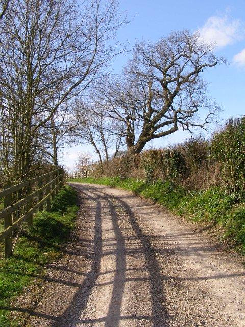 Shepherds Lane west of New Barn Farm