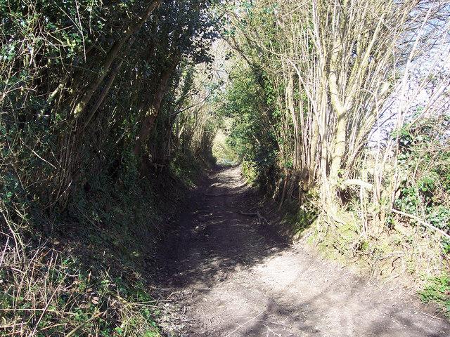 Farm track near Barber's Farm, Swallowcliffe