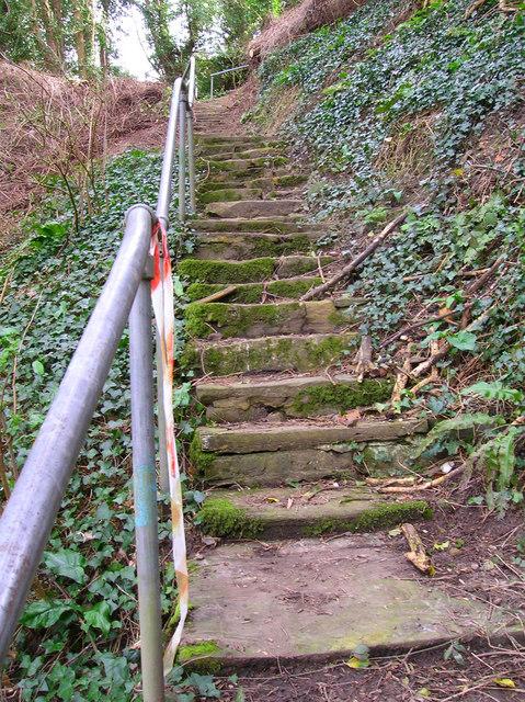 Spring Steps