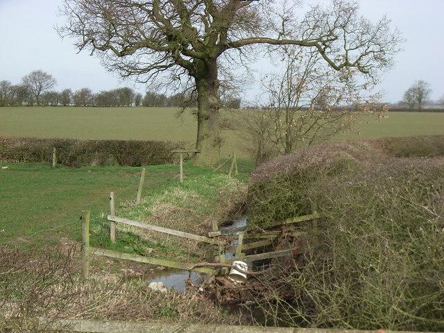 Fields & Stream East of Stoke Golding