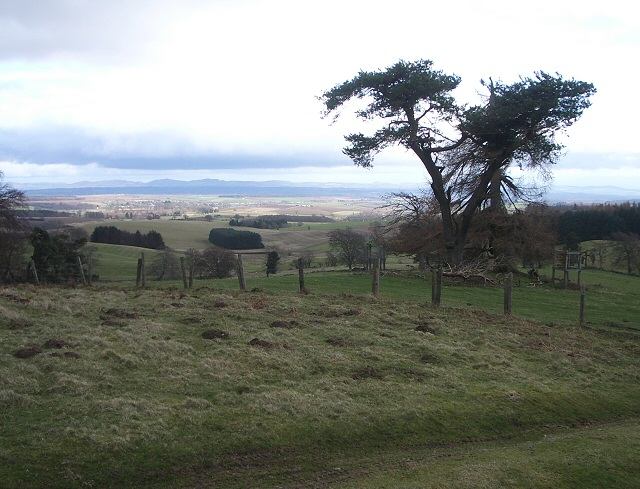 View over Tay valley