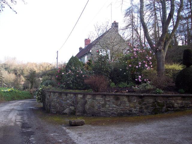 Cottage near Swallowcliffe