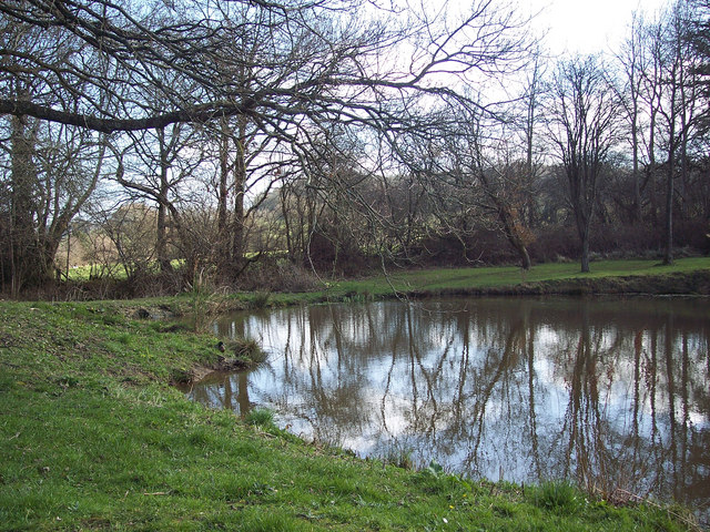 Pond by Squalls Lane, Ansty