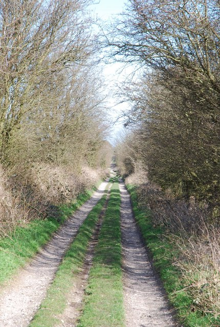Old Shaftsbury Drove continues towards Sutton Down
