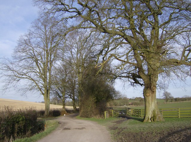 Footpath from Watership Farm