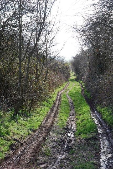 Track to North Hill Farm