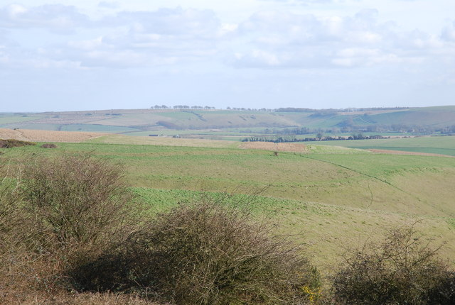 View of Prescombe Down