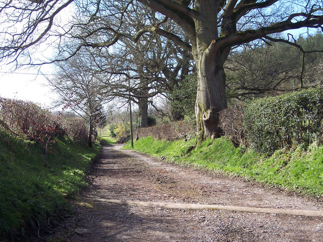 Footpath to Twelve Acre Copse, King's Lane, Ansty