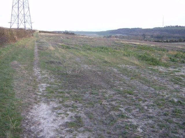 Footpath towards Kingsclere