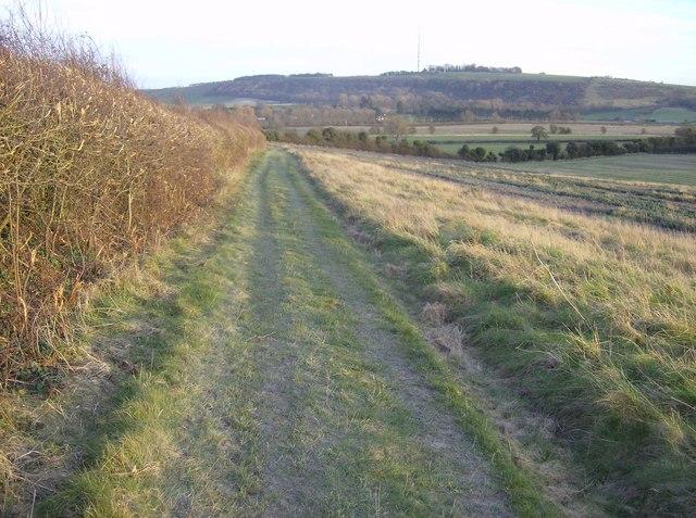 Towards Kingsclere