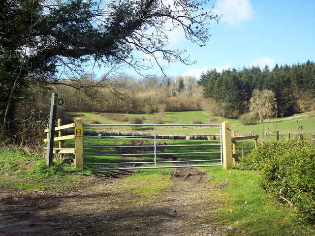 Footpath to Twelve Acre Copse, Ansty Coombe