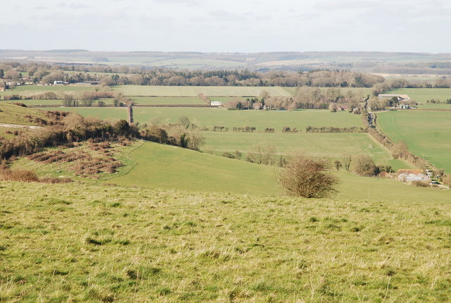 Looking down to Sheep Well from Sutton Down