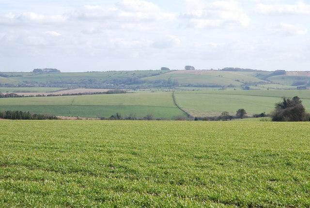 Farmland by North Barn