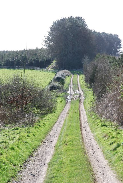Track towards Prescombe Down