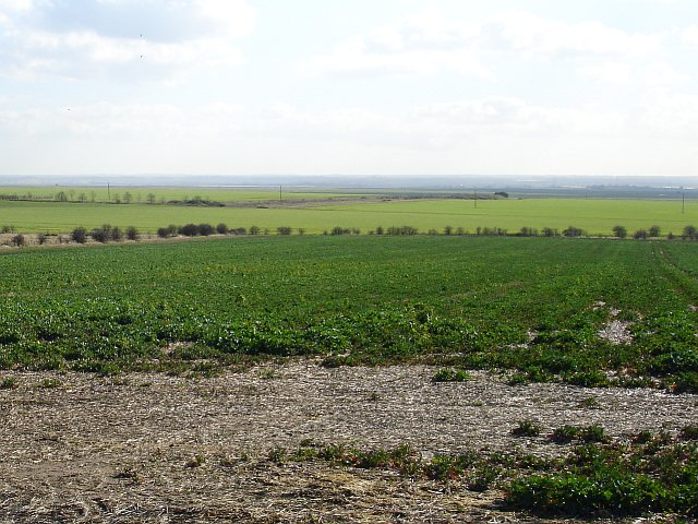 South from Forty Acres Hill