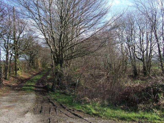 Beaworthy Bridleway 53 and dismantled railway