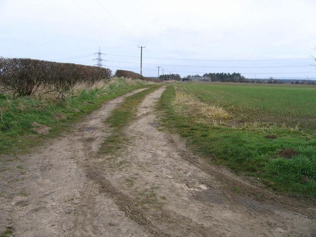 Footpath To Thornton Grange