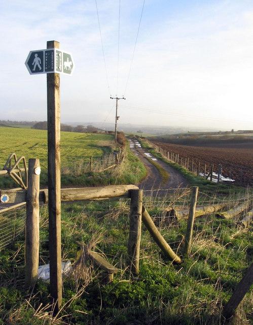 Track to Fordington Down, near Dorchester